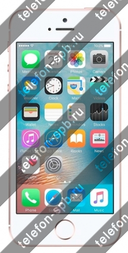 Apple (эпл) iPhone SE 64Gb купить СПб